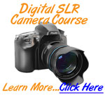 Link to THe Ultimate SLR Photography Course